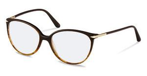 Claudia Schiffer C4011 B brown gradient