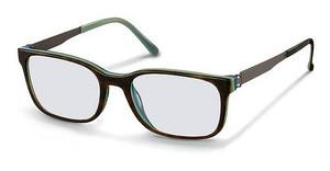 Rodenstock R5262 C brown