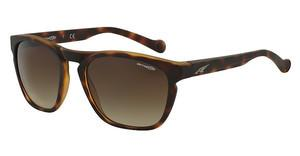 Arnette AN4203 215213 BROWN GRADIENTFUZZY HAVANA