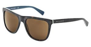 Dolce & Gabbana DG4229 286773 BROWNTOP HAVANA ON MT PETROLEUM