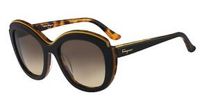 Salvatore Ferragamo SF726S 006 BLACK HAVANA