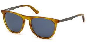 Web Eyewear WE0160 53V blauhavanna blond