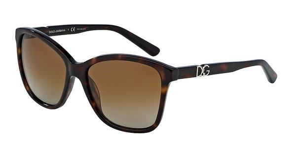 Dolce & Gabbana DG4170P 502/T5 POLAR BROWN GRADIENTTRANSPAREN HAVANA