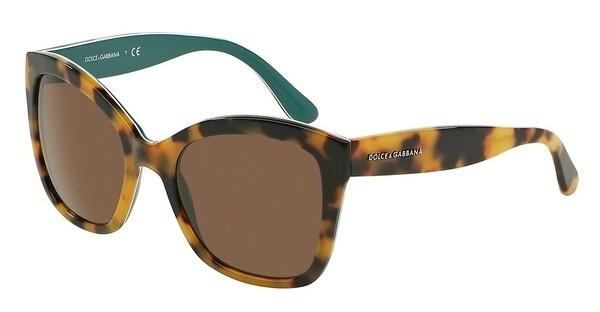 Dolce & Gabbana DG4240 289173 BROWNTOP HAVANA ON PETROLEUM