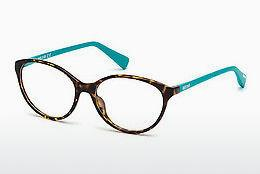 Lunettes design Just Cavalli JC0765 053 - Havanna, Yellow, Blond, Brown