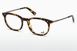 Lunettes design Web Eyewear WE5246 053
