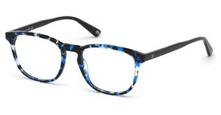 Web Eyewear WE5293 55A
