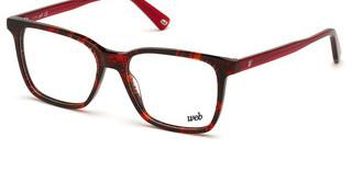 Web Eyewear WE5312 55A