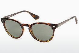 Lunettes de soleil Timberland TB9085 53R - Havanna, Yellow, Blond, Brown