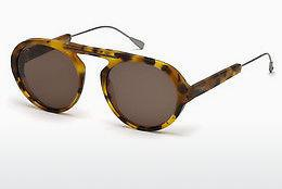 Lunettes de soleil Tod's TO0231 53J - Havanna, Yellow, Blond, Brown