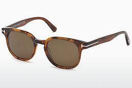 Lunettes de soleil Tom Ford Frank (FT0399 48B) - Brunes, Dark, Shiny