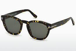 Lunettes de soleil Tom Ford FT0590 55N - Multicolores, Brunes, Havanna