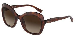 Tiffany TF4154 80023B BROWN GRADIENTHAVANA