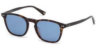 Web Eyewear WE0265 52V